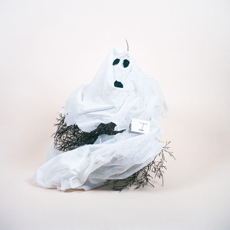 Tumbleweed decorated as ghost