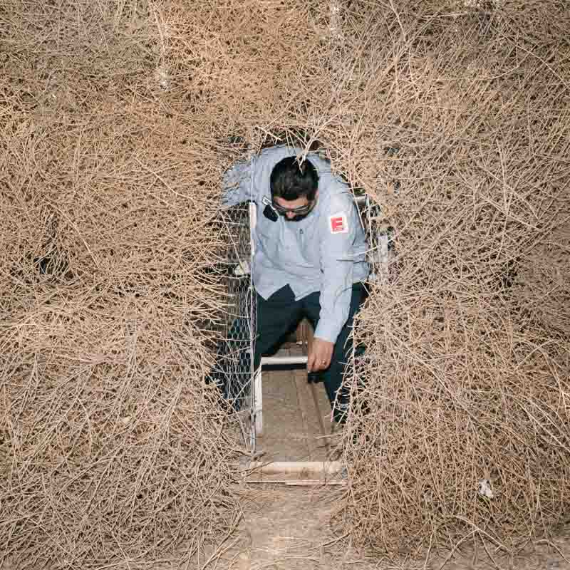 Man exits tumbleweed structure